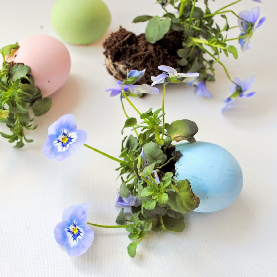 Egg Shell Crafts With Cute Everyday Appeal