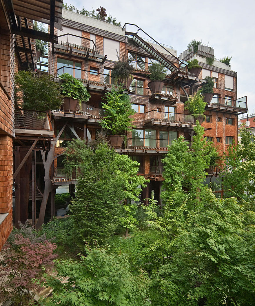 Forest View Apartments: An Apartment Complex Surrounded By 150 Trees