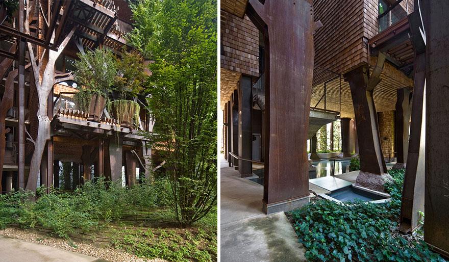 urban-treehouse-vegetation-diversity