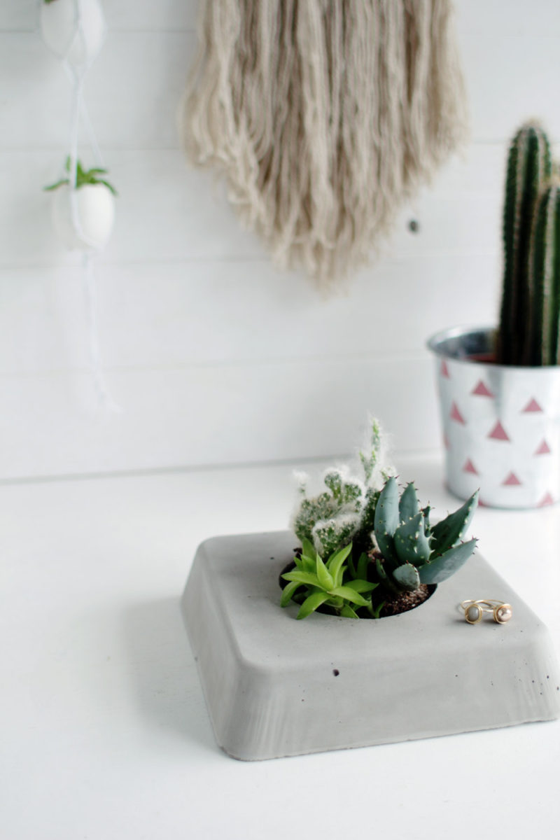 DIY Concrete Planter Box For Succulent Plants
