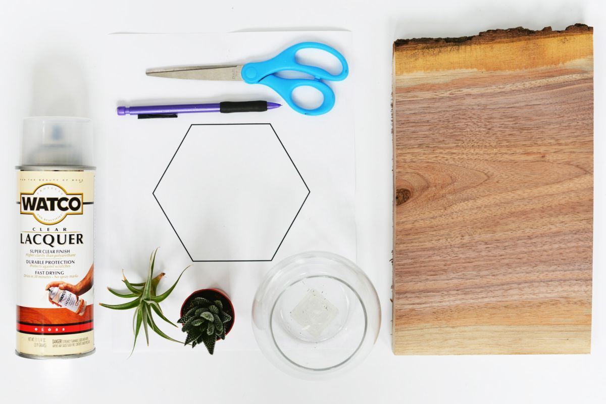 Diy Geometric Terrarium Base