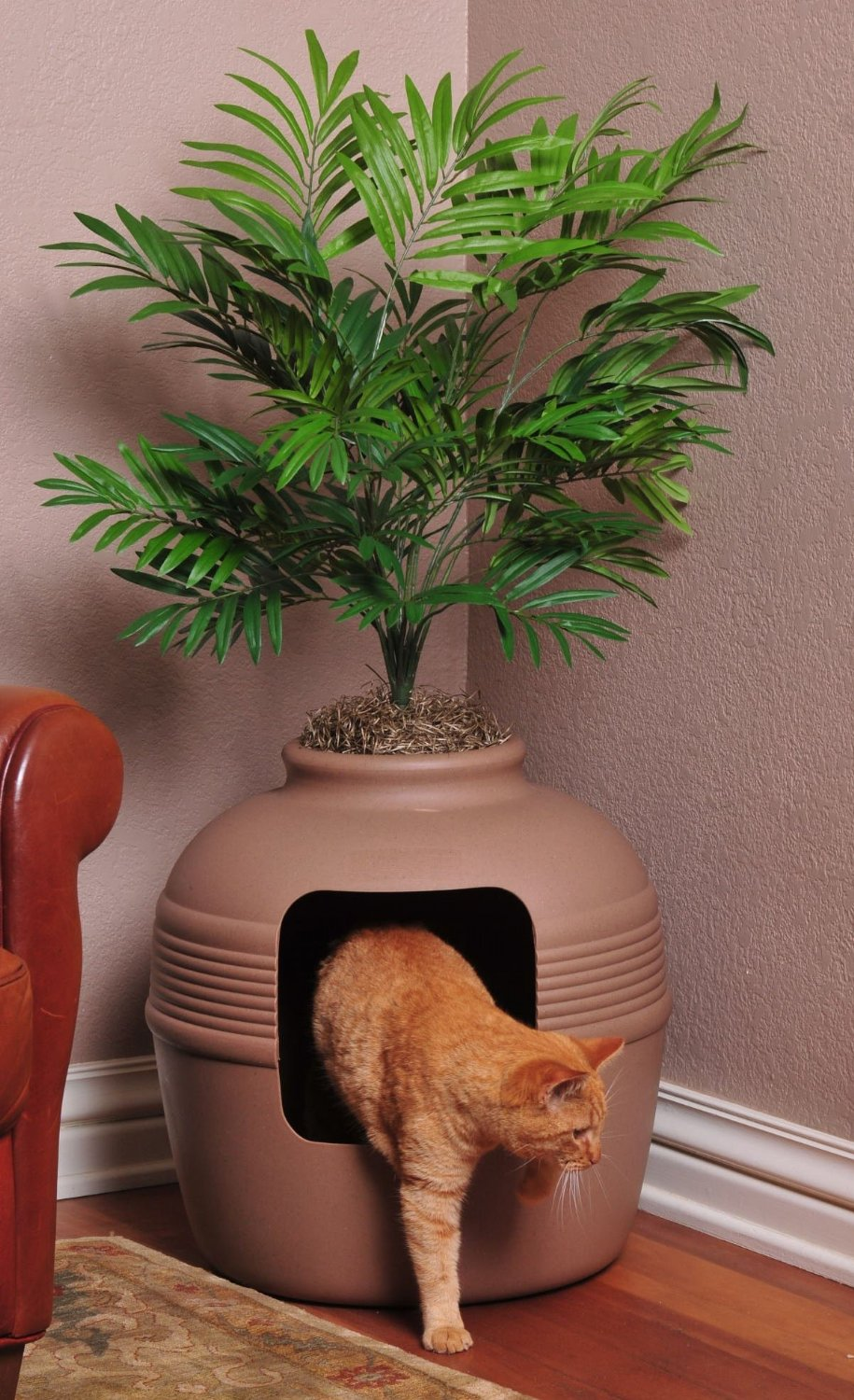 Top 10 Ingenious Ways To Hide Your Cat S Litter Box