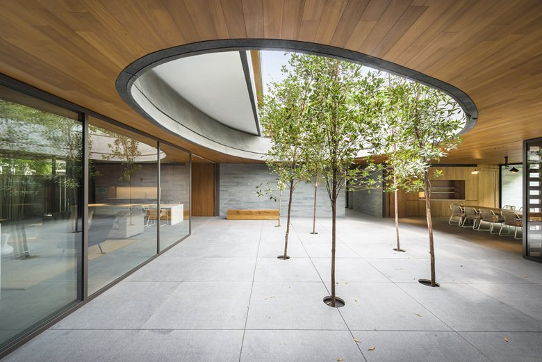Wall-House-courtyard-trees-in-the-roof