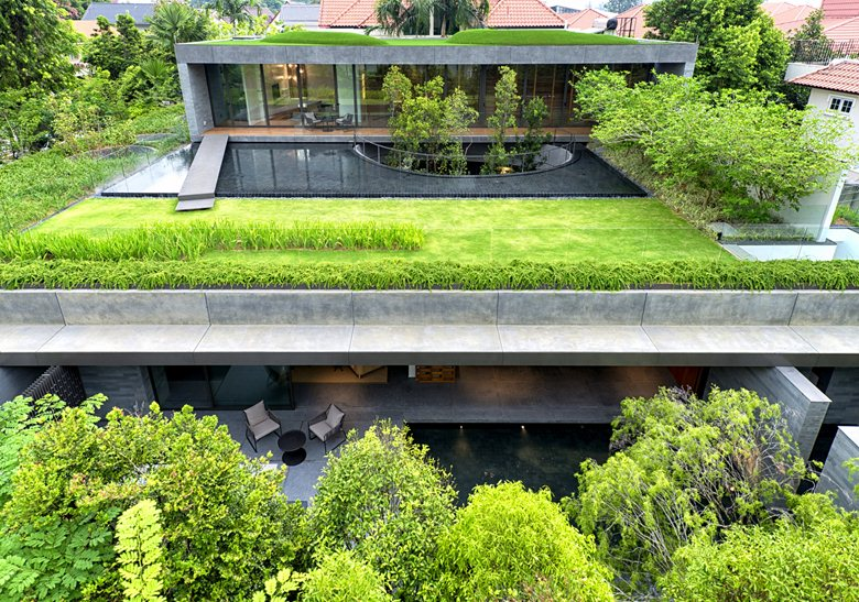 Wall-House-green-roofs