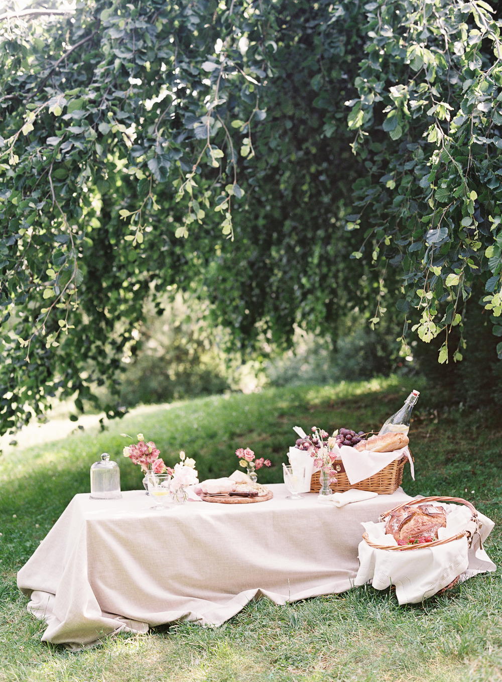 design-the-perfect-picnic