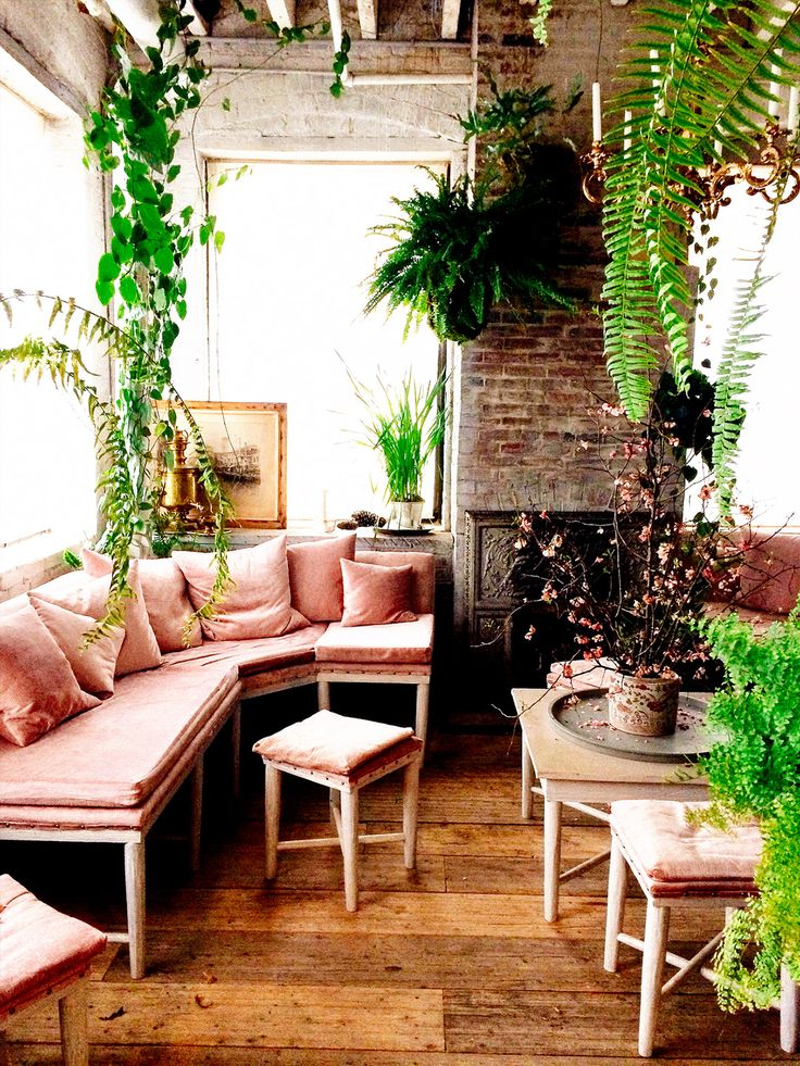 pink-sofa-outshone-by-greenery
