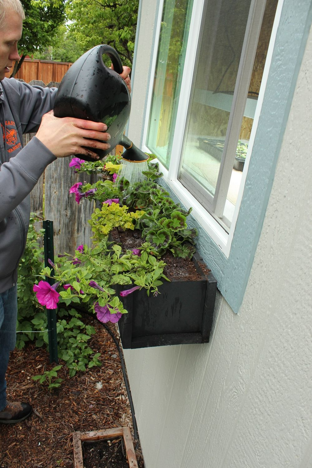 how to plant a window box ideas stepbystep guide to planting window box