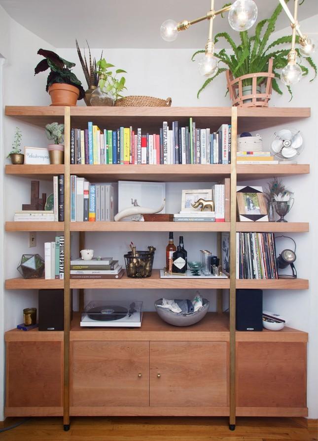 bookshelf plant