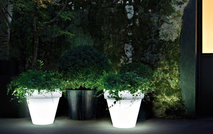iluminated-flower-vase