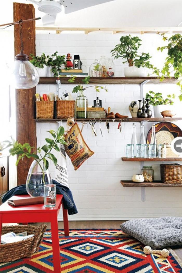 kitchen shelves plants