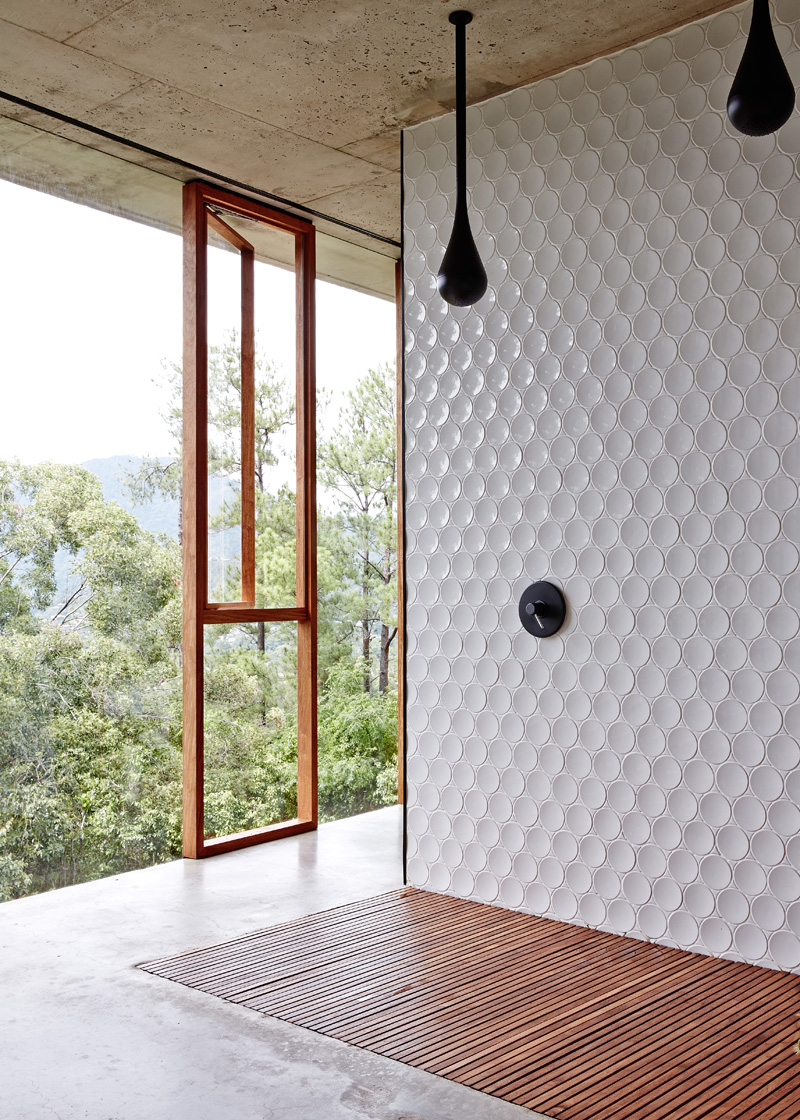 planchonella-house-bathroom-wall-texture