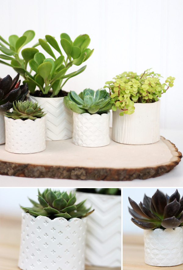 stamped-clay-succulent-pots