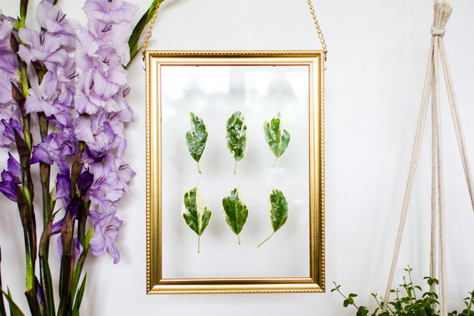 Cool DIY Hanging Gold Frame Leaf Art