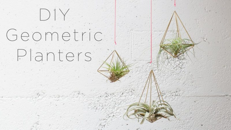 DIY Hanging Air Plants – Geometric Style