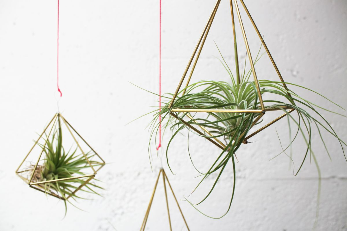 DIY Geometric Planters Closer