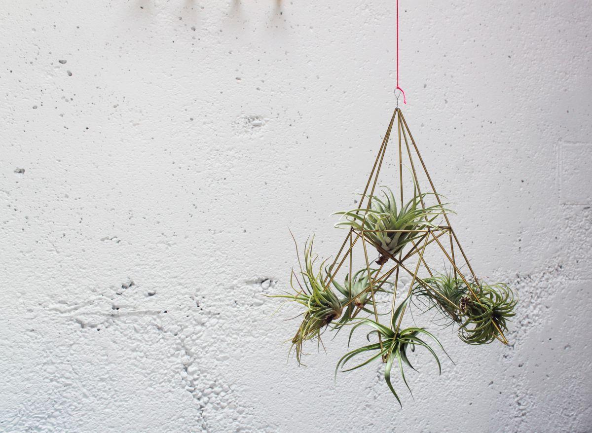 DIY Geometric Planters Hanging