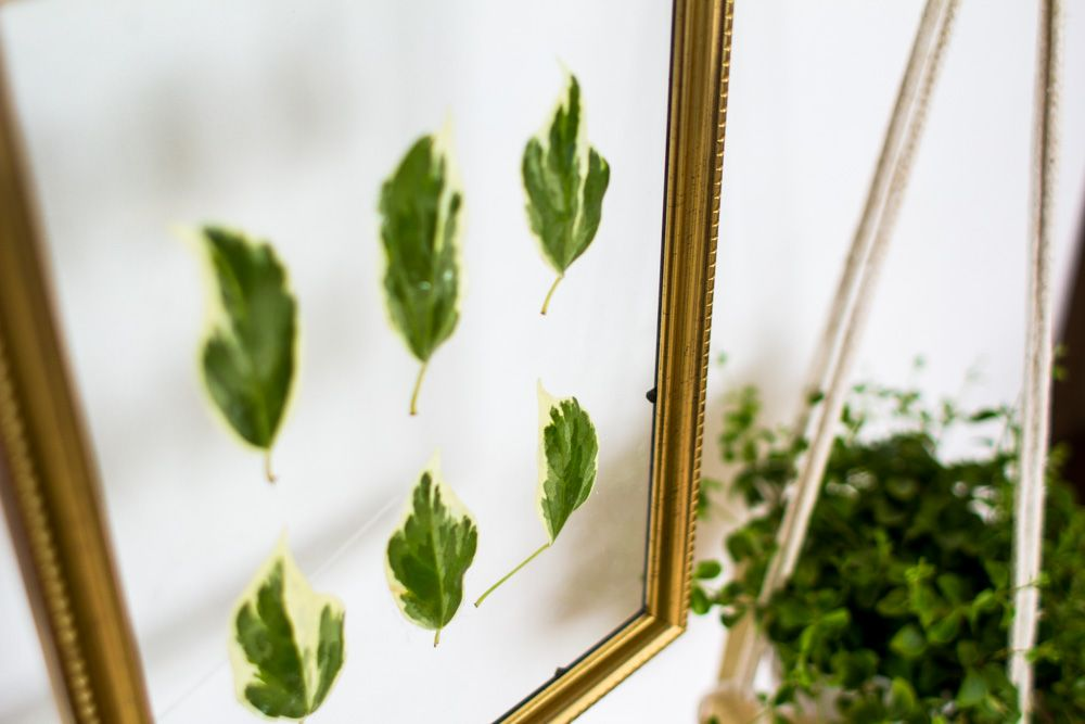 DIY Hanging Gold Frame Leaf Art Closer
