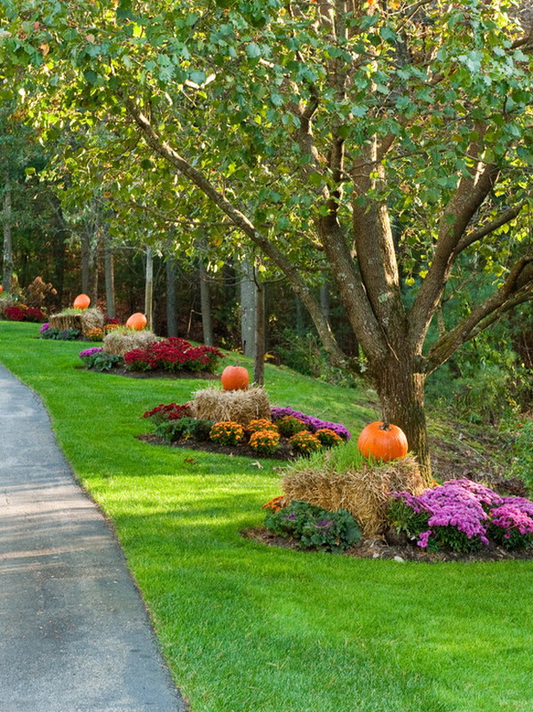 Fall Landscaping Ideas Front Yard Part - 15: Highlight Driveway
