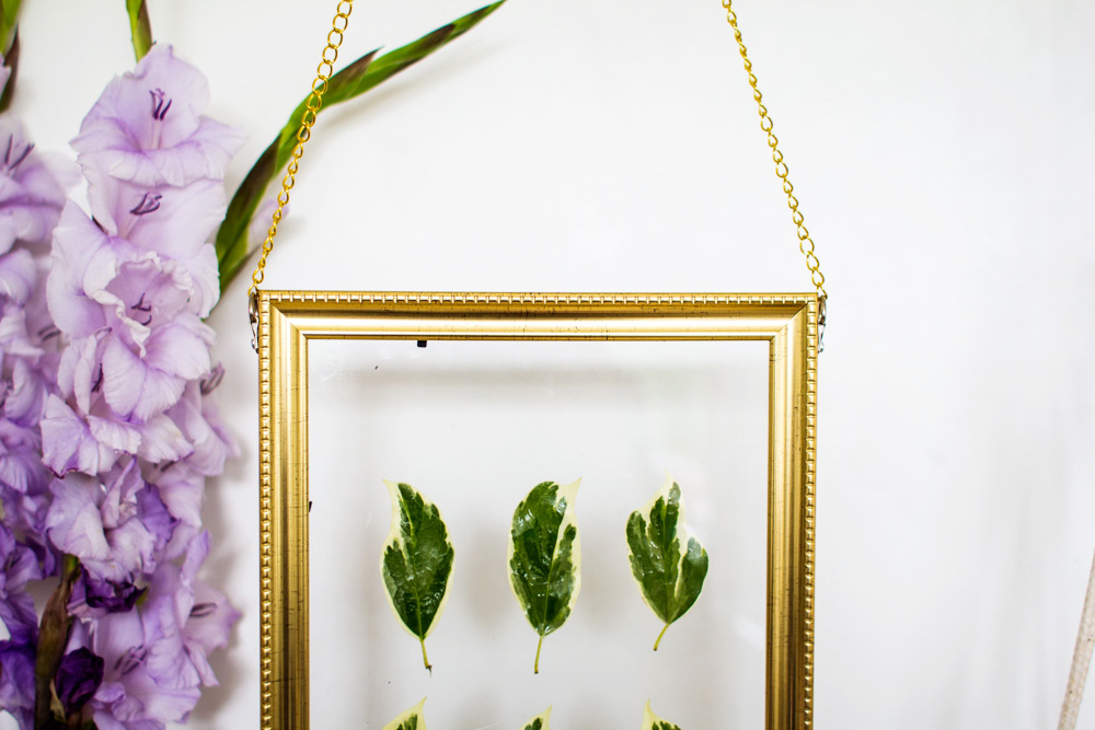Leaf-Frame-Art