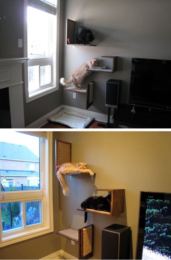 Multifunctional cat tree