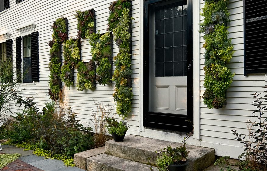 Lovely Outdoor House Facade Vertical Garden