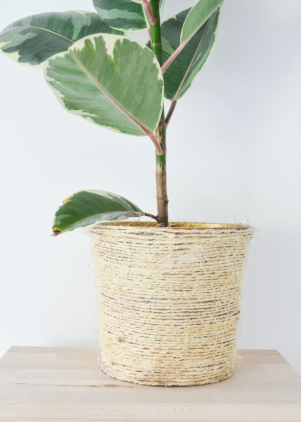 Transform an old planter with rope