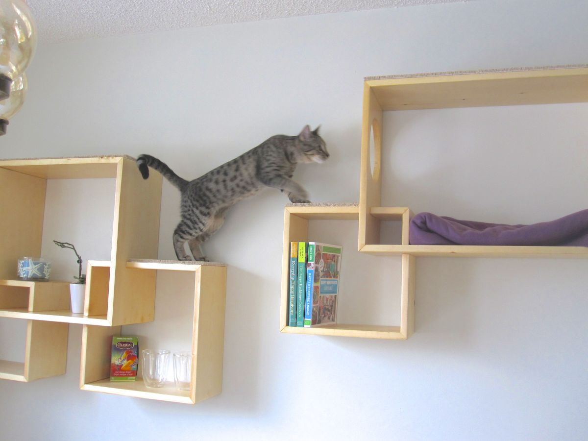 modern cat tree alternatives for up to date pets rh homedit com Making Cat Wall Shelves Real Wood Cat Trees