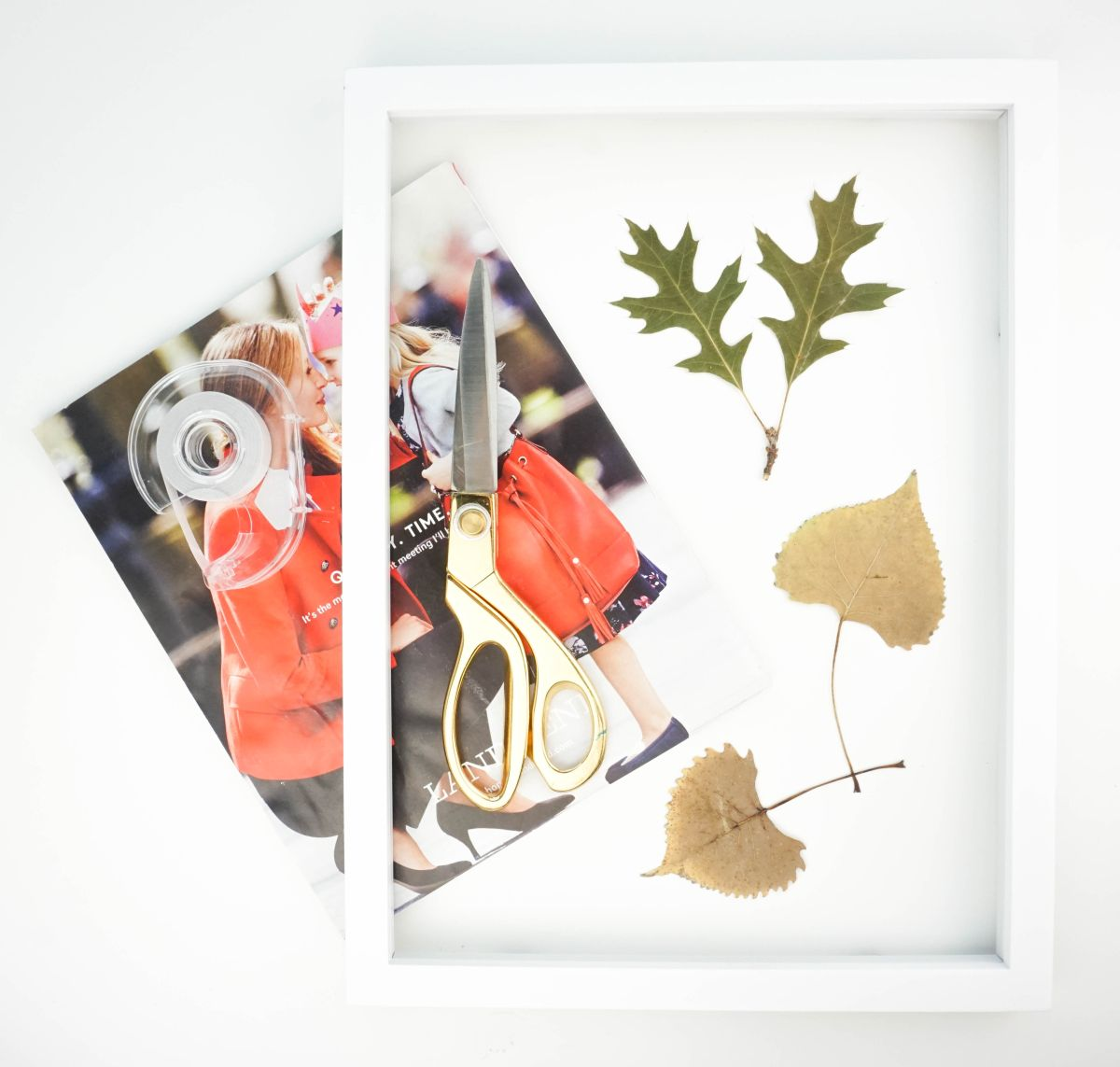 Autumnal Pressed Leaf Art Materials