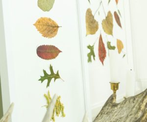 Autumn Pressed Leaf Art
