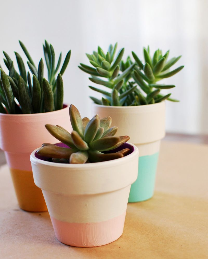 Color Blocker on Terracota pots & Simple DIY Ways To Customize Terracotta Pots