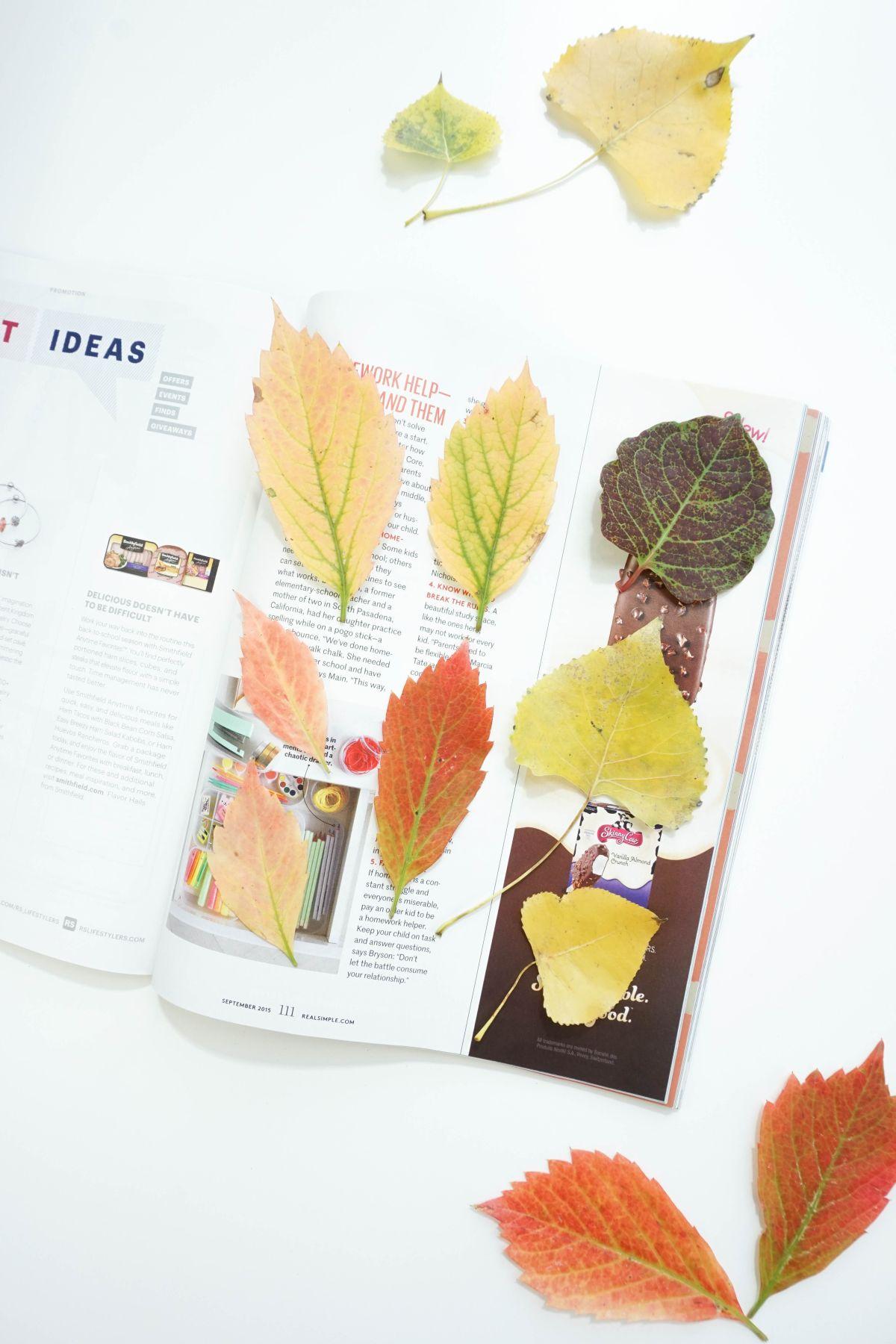 Dry in Magazines