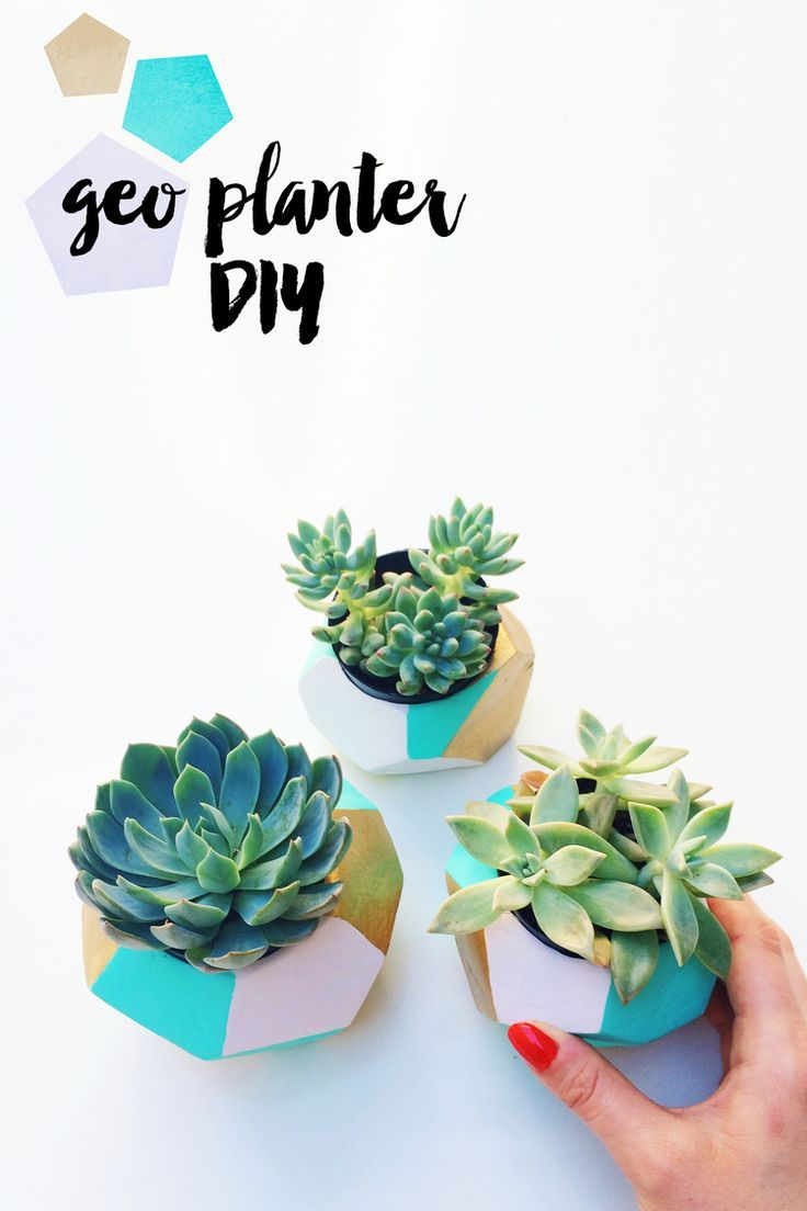 18. Create Your Own Mini Geo Planters.