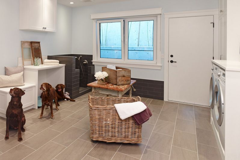Choosing The Best Type Of Flooring For Dogs And Their Owners - Which flooring is best for house