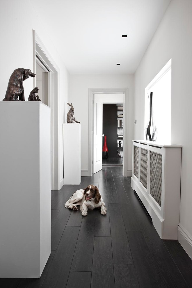 Choosing The Best Type Of Flooring For Dogs And Their Owners