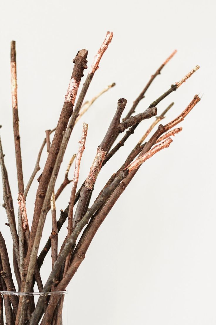 copper leaf sticks