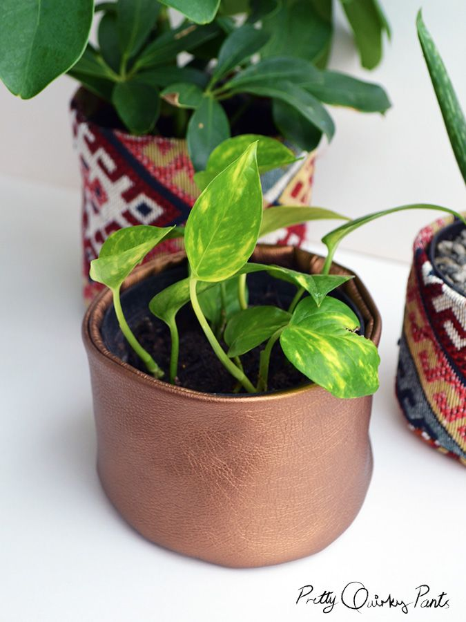 leather plant pot
