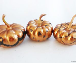 Cute Home Decorations You Can Make With Mini Pumpkins