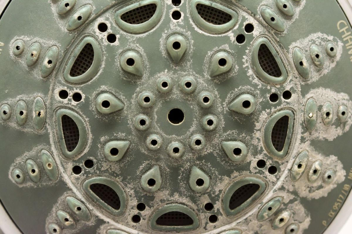 Calcified shower head