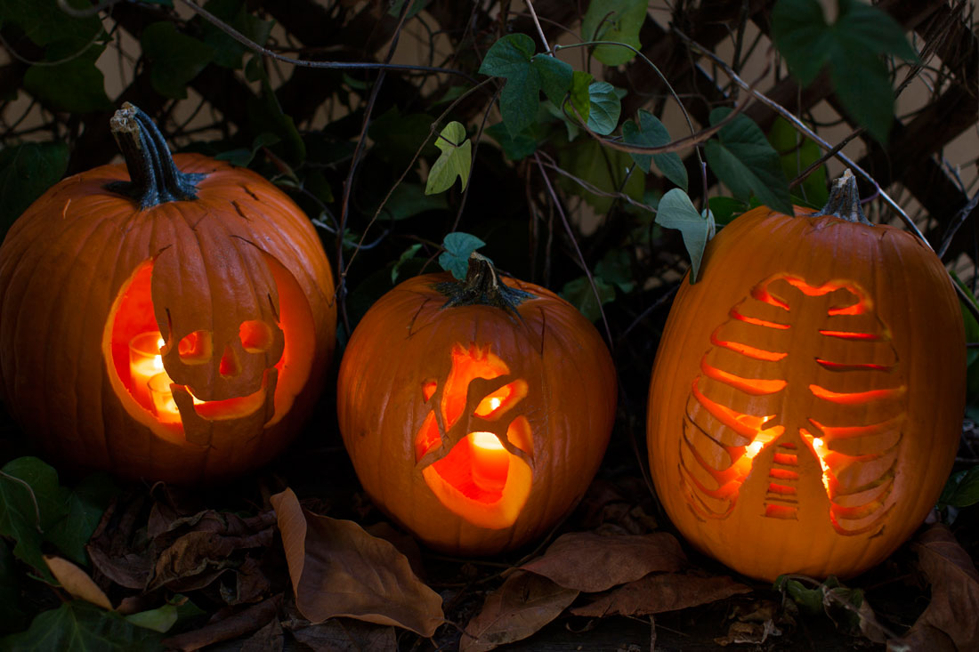 Carved Anatomy Pumpkins
