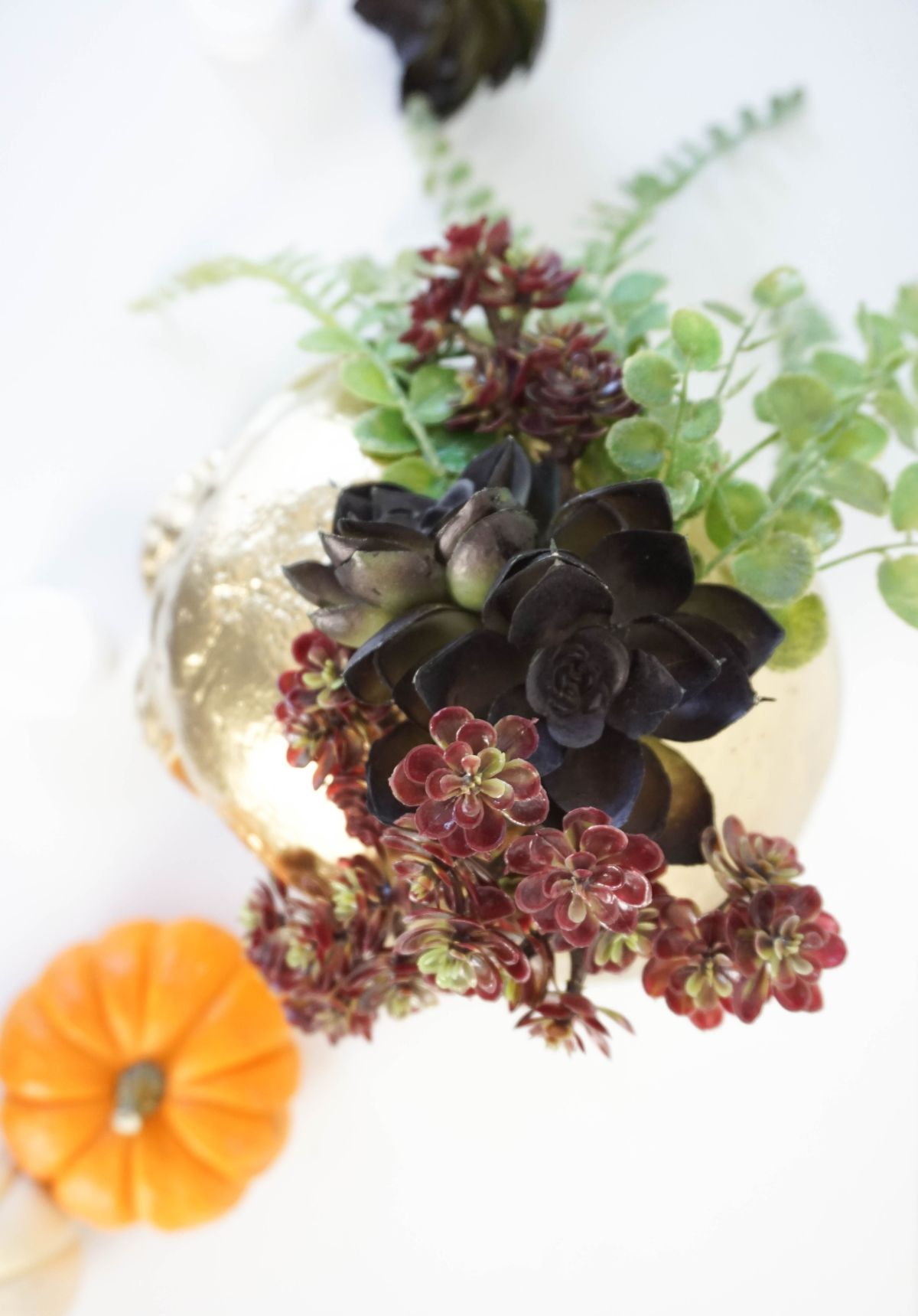 DIY Gilded Skull Vase Succulent