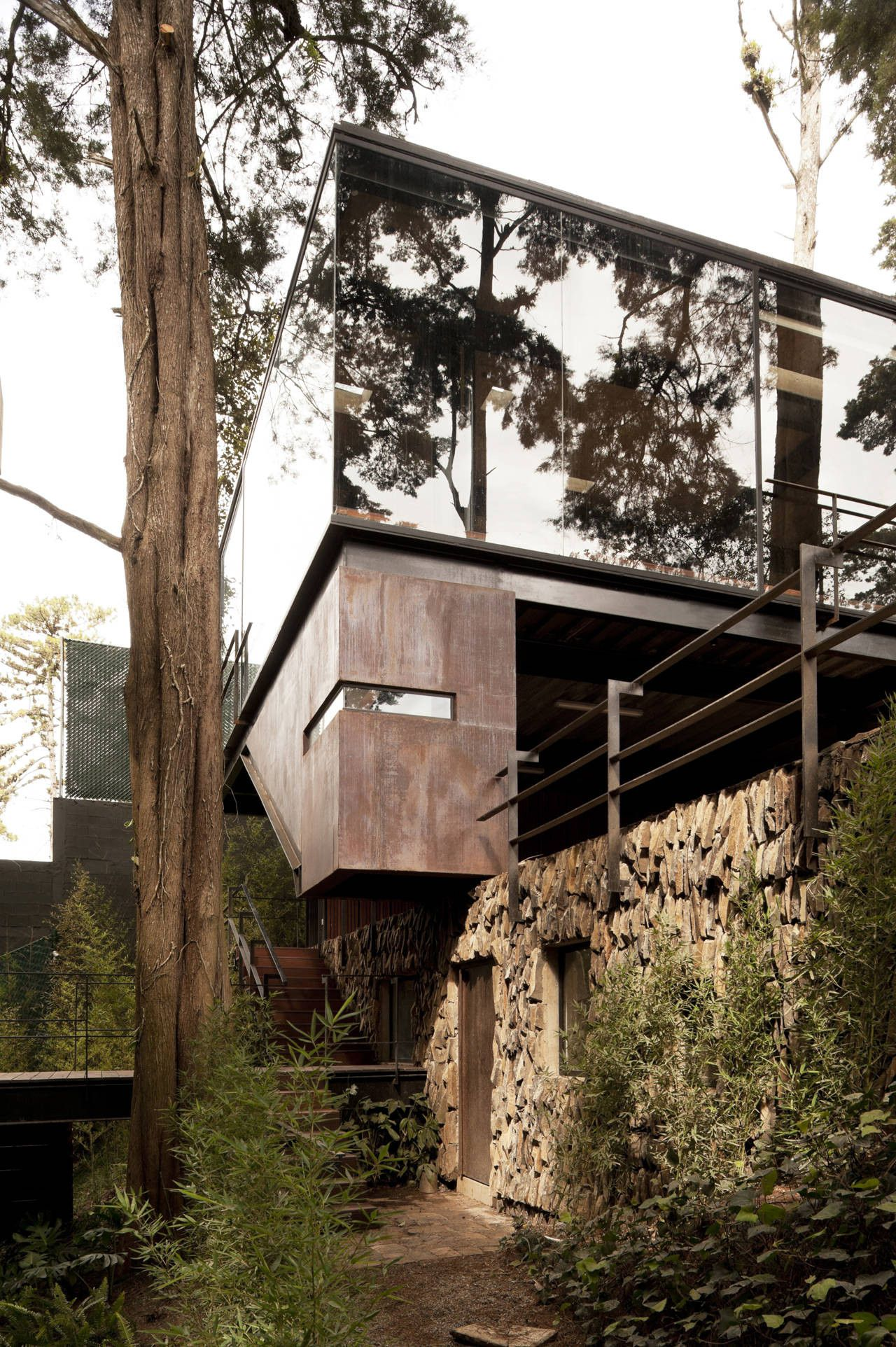 Dense hillside forest house Large glass wall