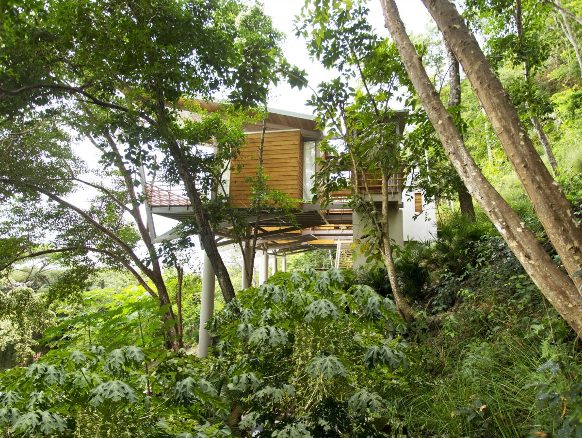 Flotanta House Around Lush Forest