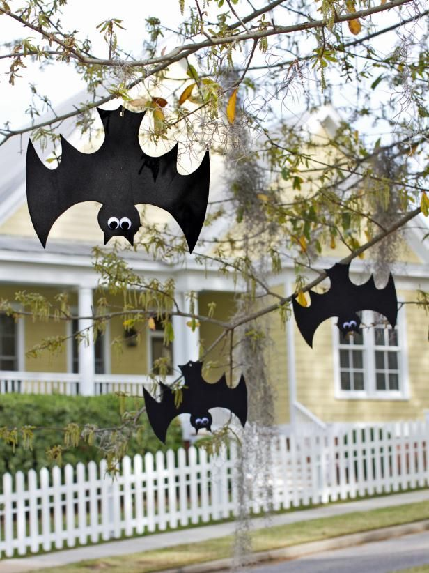 Foam bats hanging on tree