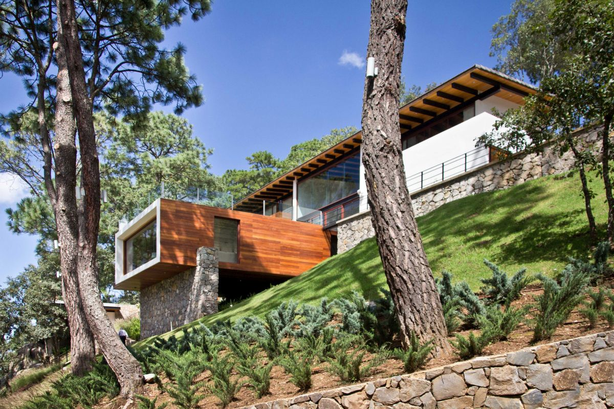 Forest House in Mexic