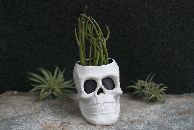 Explore Your Dark Side How To Decorate With Skulls