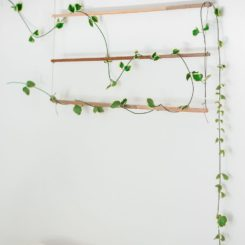 Make A Nature Inspired Wall Hanging For Your Bedroom
