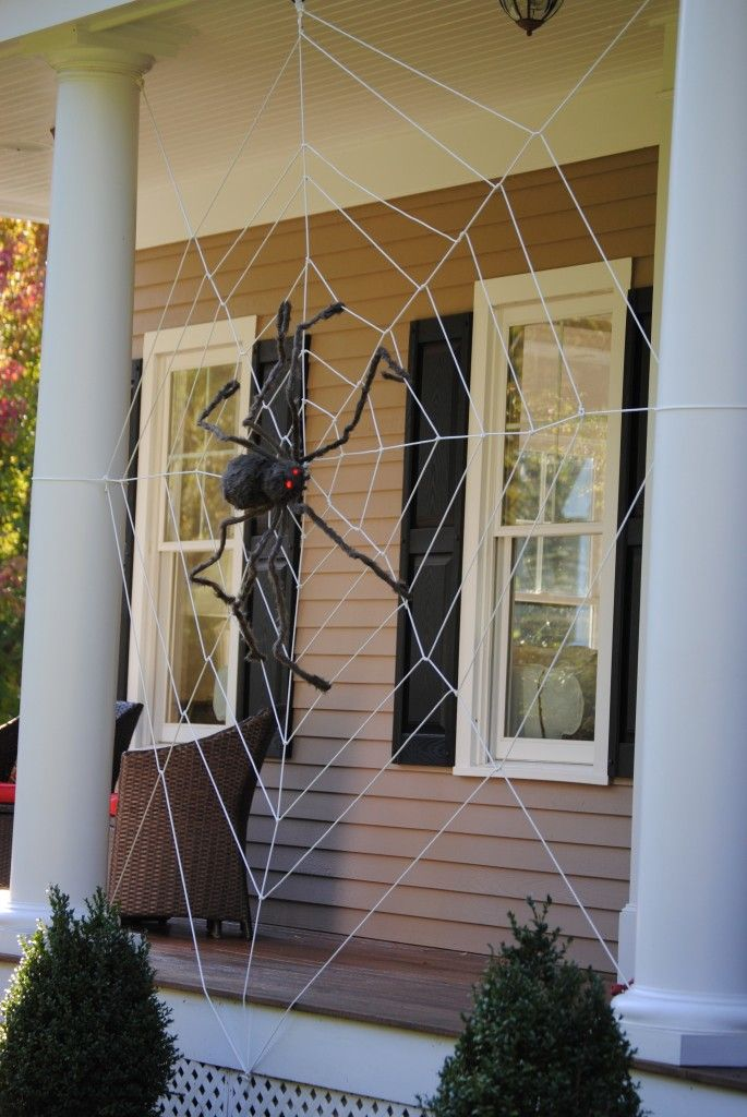 Homemade spider web