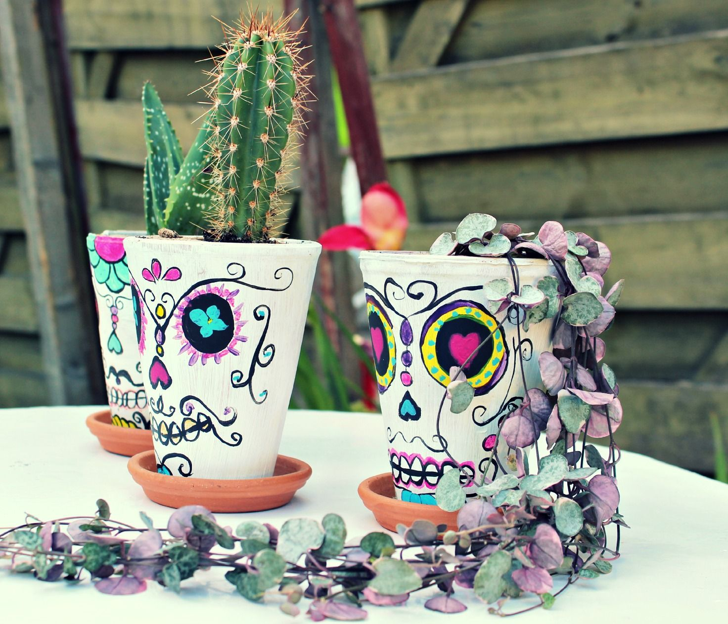 Mexican sugar skull planter