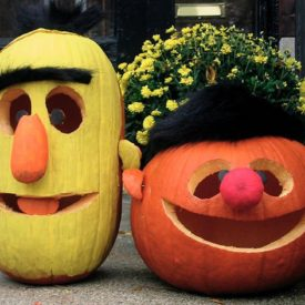 Pumpkin Jack Lanterns