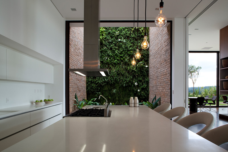 Quinta da Baronesa house kitchen vertical garden